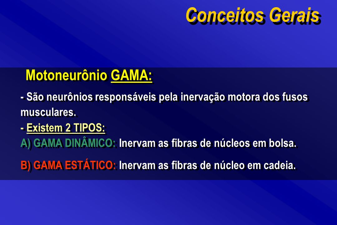 Motoneurônio GAMA: - São neurônios responsáveis pela inervação motora dos fusos musculares. - Existem 2 TIPOS: A) GAMA DINÂMICO: Inervam as fibras de