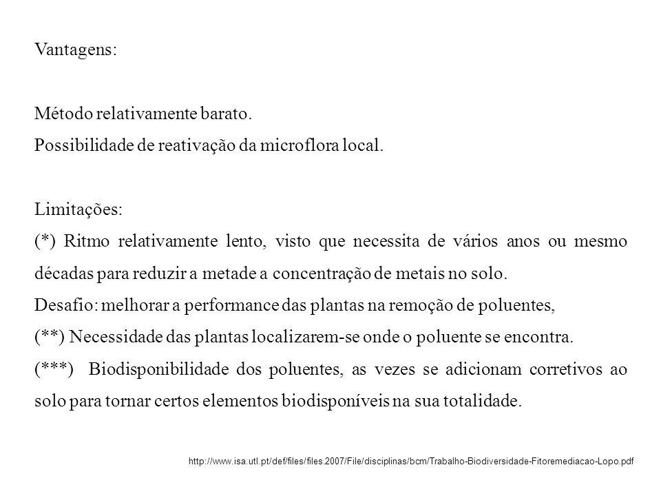 Vantagens: Método relativamente barato. Possibilidade de reativação da microflora local. Limitações: (*) Ritmo relativamente lento, visto que necessit