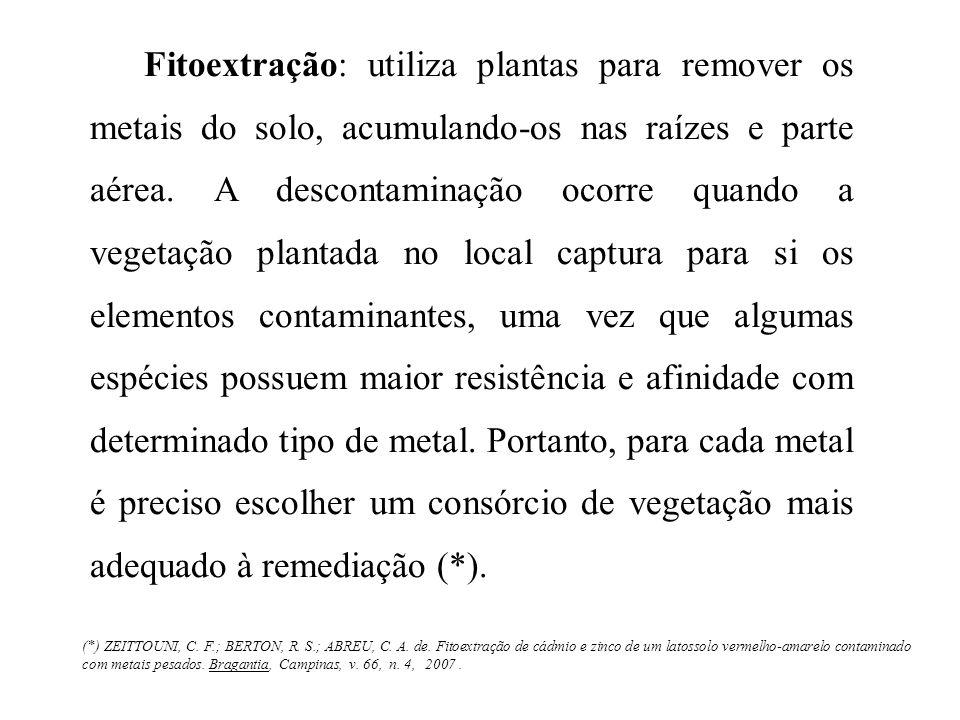 Fitoextração: utiliza plantas para remover os metais do solo, acumulando-os nas raízes e parte aérea. A descontaminação ocorre quando a vegetação plan