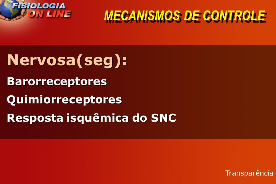 MECANISMOS DE CONTROLE Circulatória (minutos)Circulatória (minutos) - Troca de líquidos capilares (relaxamento por stress)