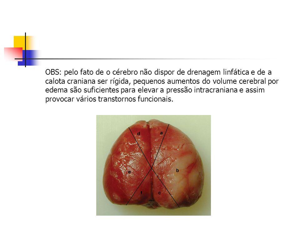 OBS: pelo fato de o cérebro não dispor de drenagem linfática e de a calota craniana ser rígida, pequenos aumentos do volume cerebral por edema são suf