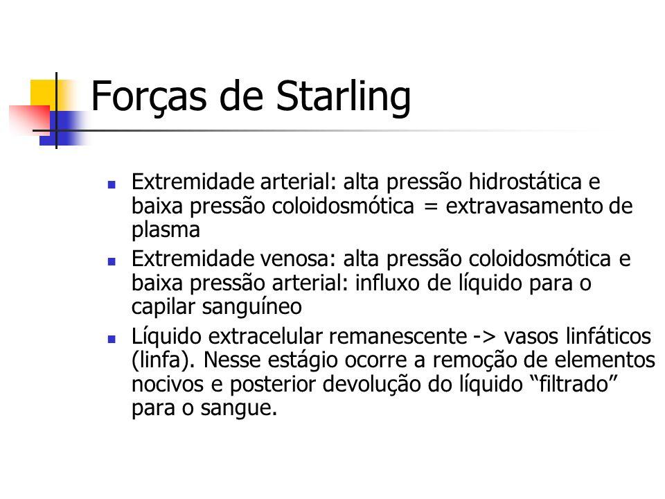 Forças de Starling Extremidade arterial: alta pressão hidrostática e baixa pressão coloidosmótica = extravasamento de plasma Extremidade venosa: alta