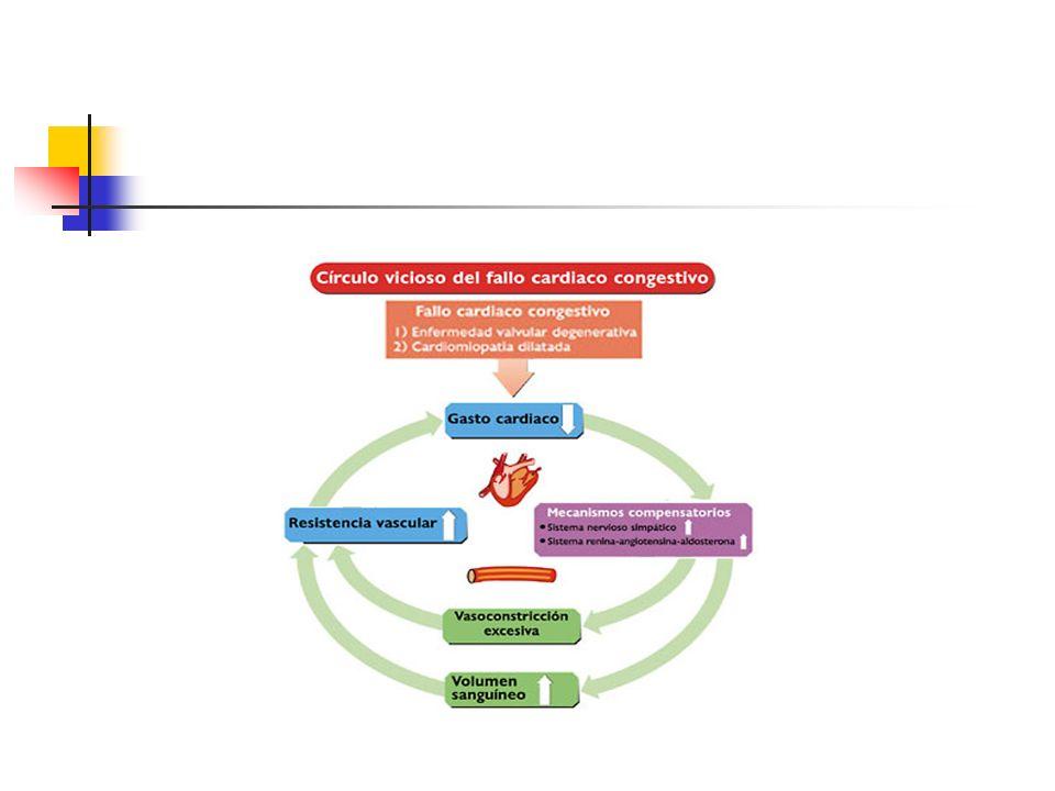 Pressão coloidosmótica reduzida Resultante da perda excessiva (síndrome nefrótica, lesões gastrintestinais) ou síntese diminuída de albumina e outras proteínas (cirrose, desnutrição proteica) Síndrome nefrótica capilares glomerulares alterados estruturalmente e/ou físico- quimicamente-> grande perda de proteínas plasmáticas-> pressão oncótica do plasma-> edema (pode ser intenso incluindo hidroperitônio e hidrotórax)
