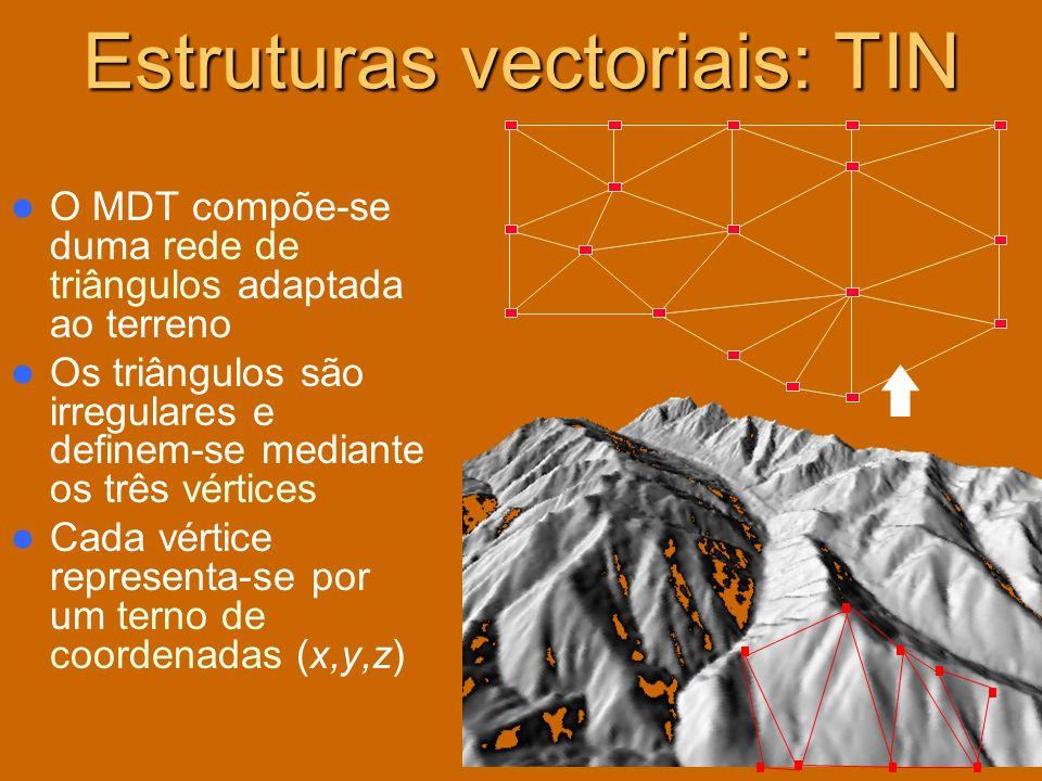 Estruturas vectoriais: TIN O MDT compõe-se duma rede de triângulos adaptada ao terreno Os triângulos são irregulares e definem-se mediante os três vér