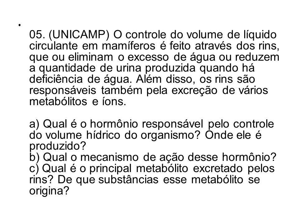05. (UNICAMP) O controle do volume de líquido circulante em mamíferos é feito através dos rins, que ou eliminam o excesso de água ou reduzem a quantid