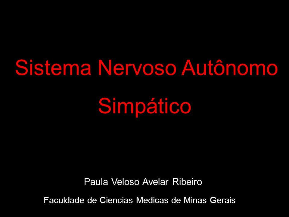 Sistema Nervoso Autônomo Simpático Paula Veloso Avelar Ribeiro Faculdade de Ciencias Medicas de Minas Gerais