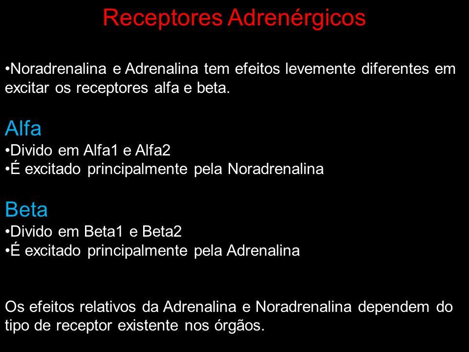 Receptores Adrenérgicos Noradrenalina e Adrenalina tem efeitos levemente diferentes em excitar os receptores alfa e beta. Alfa Divido em Alfa1 e Alfa2