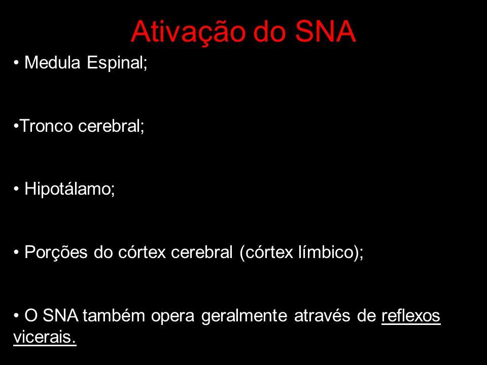 Ativação do SNA Medula Espinal; Tronco cerebral; Hipotálamo; Porções do córtex cerebral (córtex límbico); O SNA também opera geralmente através de ref