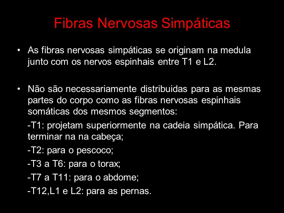 Fibras Nervosas Simpáticas As fibras nervosas simpáticas se originam na medula junto com os nervos espinhais entre T1 e L2. Não são necessariamente di