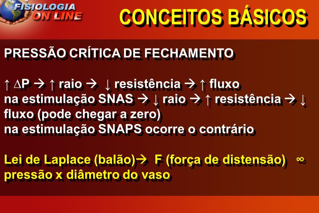 CONCEITOS BÁSICOS FLUXO SANGUÍNEO VELOCIDADE X ÁREA DE SECÇÃO FLUXO LAMINAR x FLUXO TURBULENTO