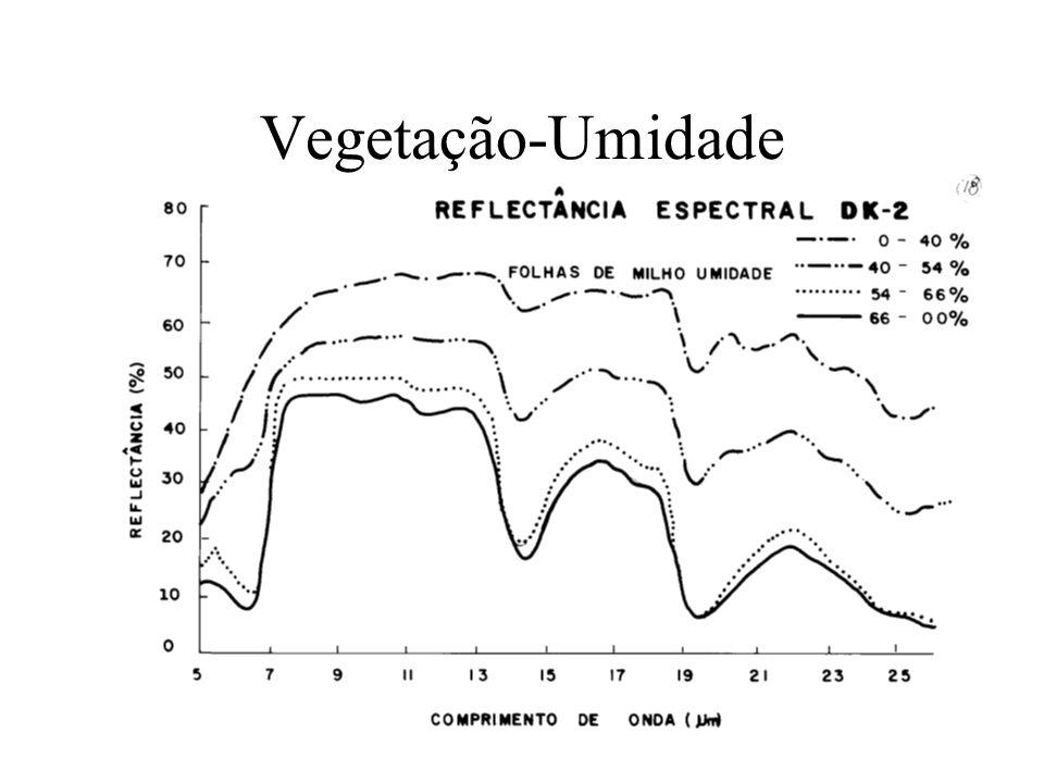 Vegetação-Umidade