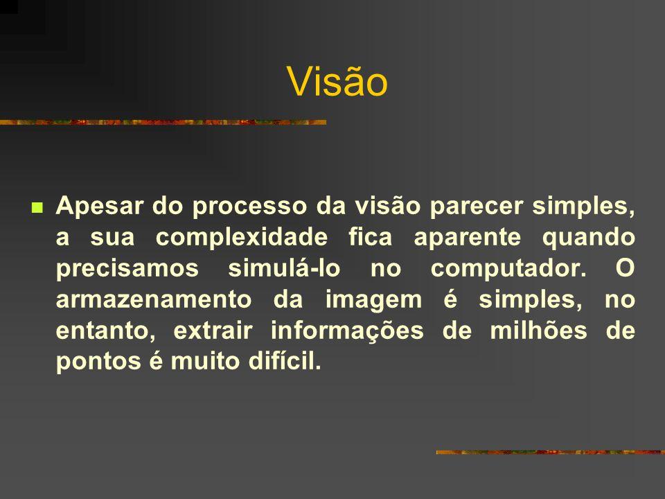 Visão Apesar do processo da visão parecer simples, a sua complexidade fica aparente quando precisamos simulá-lo no computador. O armazenamento da imag