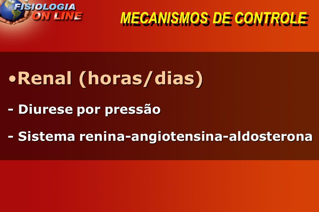 MECANISMOS DE CONTROLE Renal (horas/dias)Renal (horas/dias) - Diurese por pressão - Sistema renina-angiotensina-aldosterona