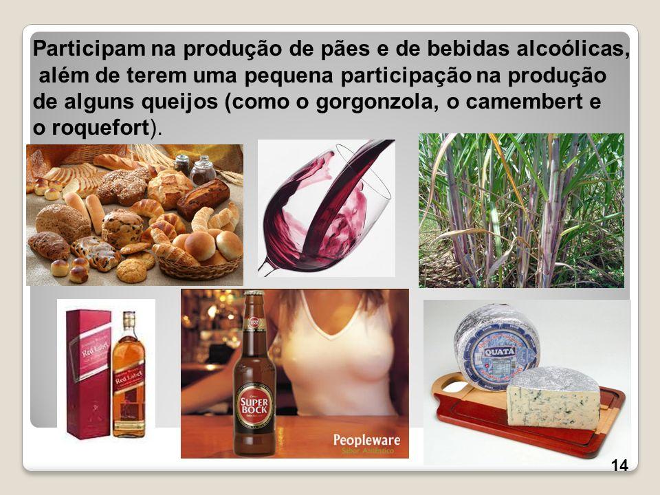 Participam na produção de pães e de bebidas alcoólicas, além de terem uma pequena participação na produção de alguns queijos (como o gorgonzola, o cam