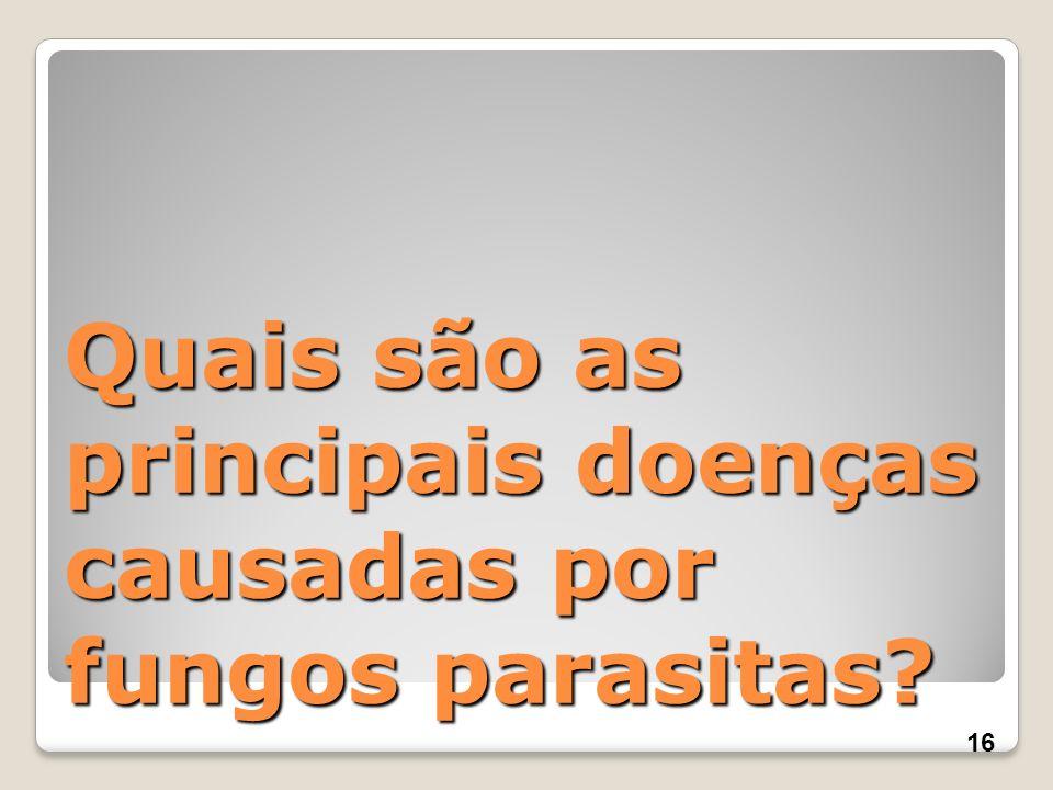Quais são as principais doenças causadas por fungos parasitas? 16