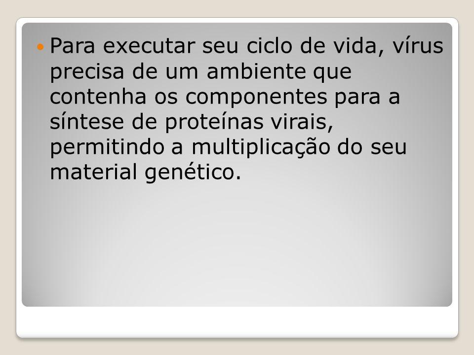 Para executar seu ciclo de vida, vírus precisa de um ambiente que contenha os componentes para a síntese de proteínas virais, permitindo a multiplicaç