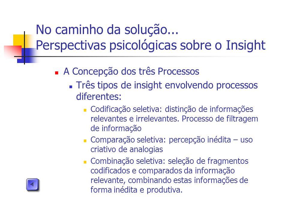 A Concepção dos três Processos Três tipos de insight envolvendo processos diferentes: Codificação seletiva: distinção de informações relevantes e irre