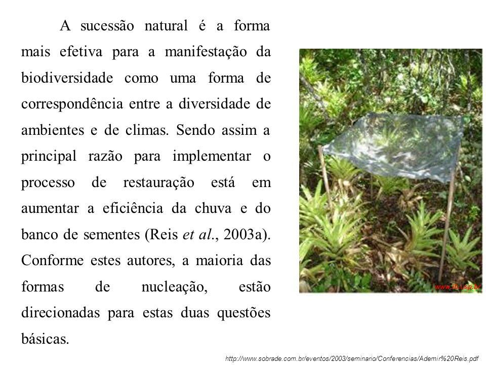 A sucessão natural é a forma mais efetiva para a manifestação da biodiversidade como uma forma de correspondência entre a diversidade de ambientes e d