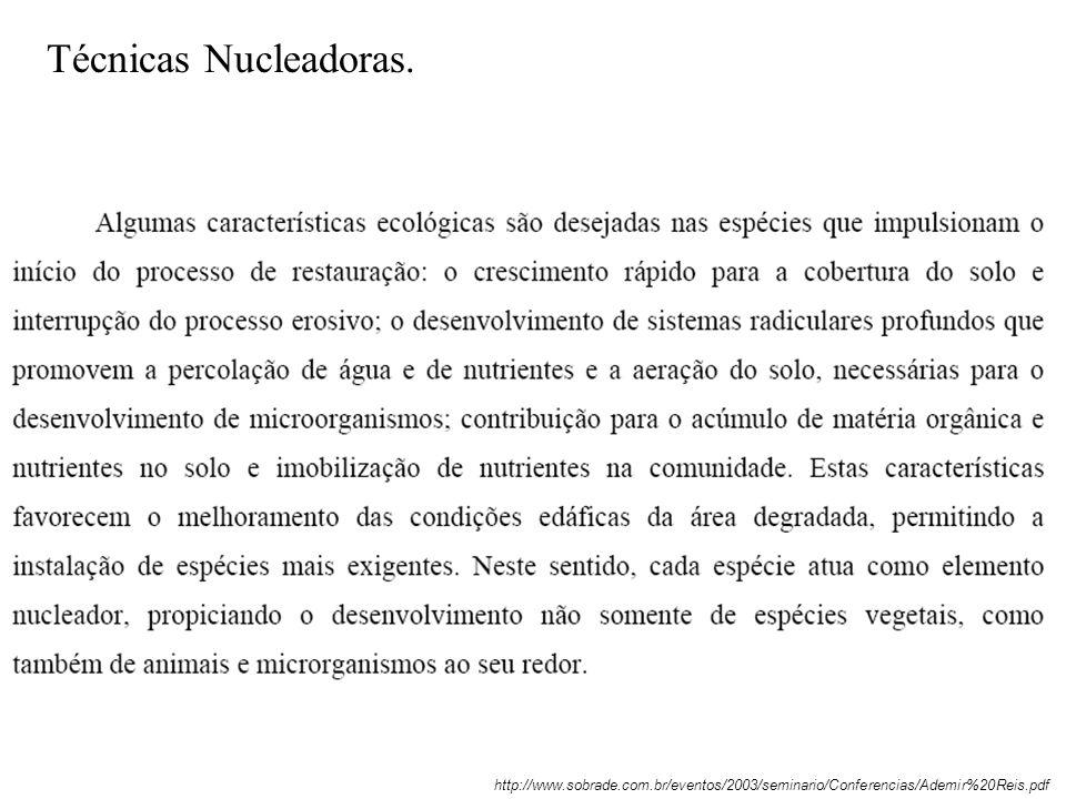 Técnicas Nucleadoras. http://www.sobrade.com.br/eventos/2003/seminario/Conferencias/Ademir%20Reis.pdf