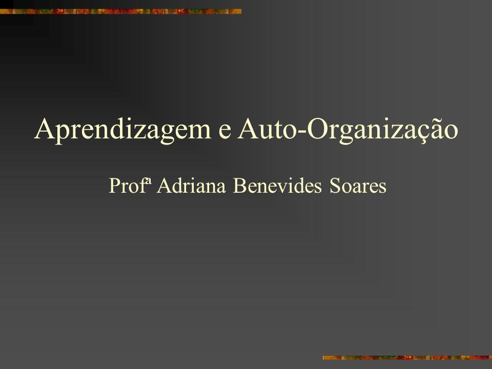 Aprendizagem e Auto-Organização Profª Adriana Benevides Soares