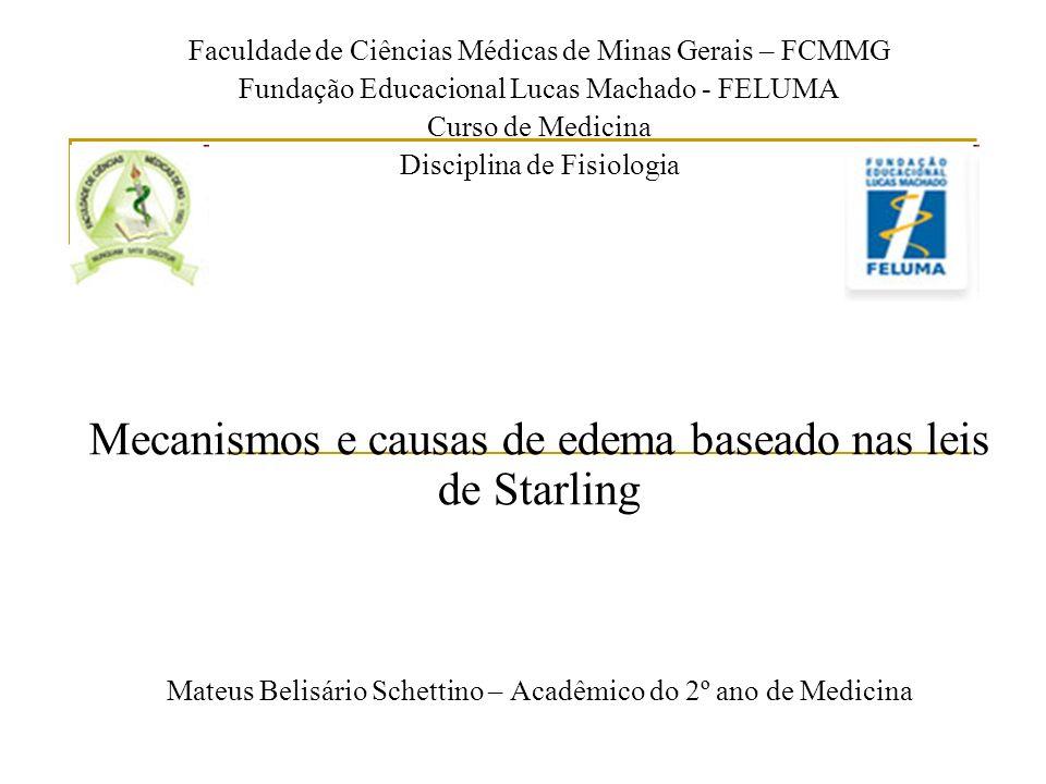 Faculdade de Ciências Médicas de Minas Gerais – FCMMG Fundação Educacional Lucas Machado - FELUMA Curso de Medicina Disciplina de Fisiologia Mecanismo