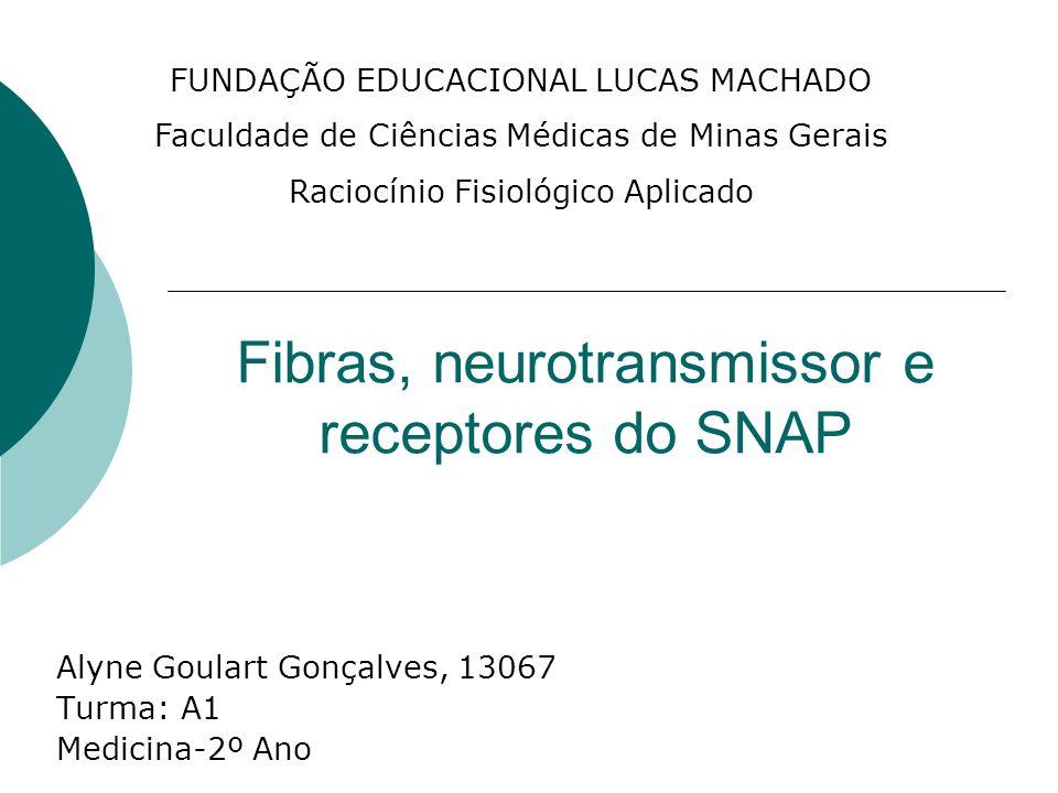 Fibras, neurotransmissor e receptores do SNAP Alyne Goulart Gonçalves, 13067 Turma: A1 Medicina-2º Ano FUNDAÇÃO EDUCACIONAL LUCAS MACHADO Faculdade de
