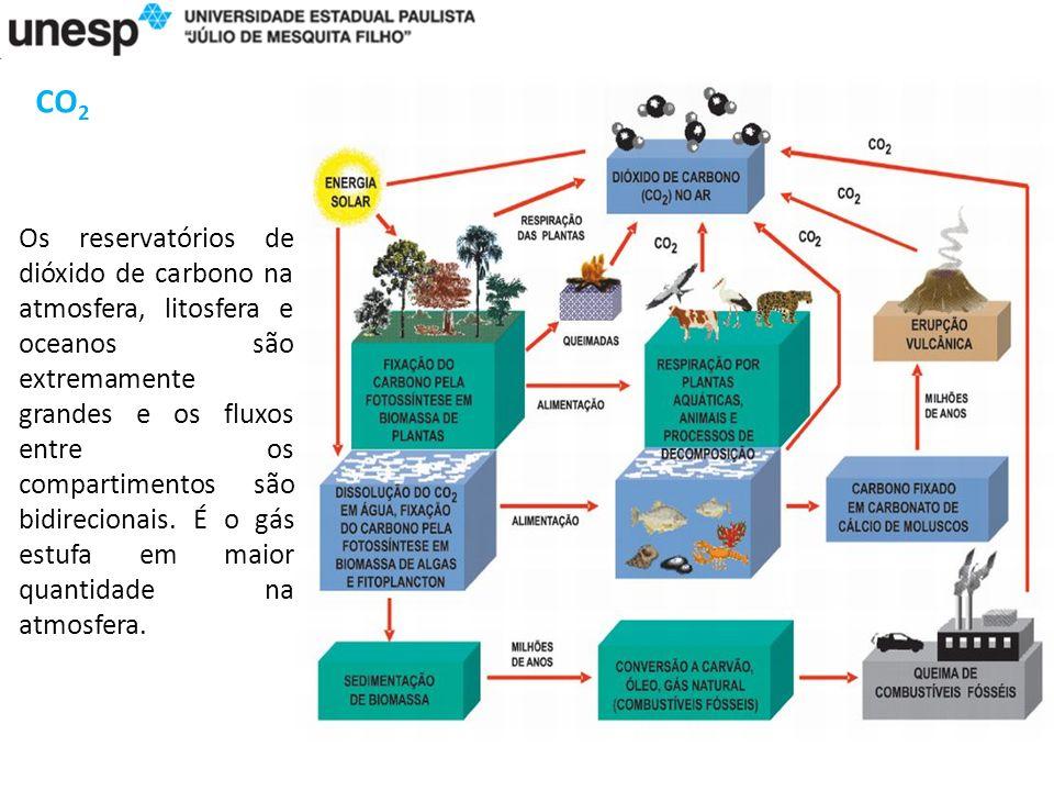 CO 2 Os reservatórios de dióxido de carbono na atmosfera, litosfera e oceanos são extremamente grandes e os fluxos entre os compartimentos são bidirecionais.