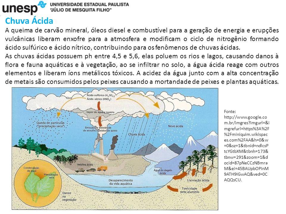 Chuva Ácida A queima de carvão mineral, óleos diesel e combustível para a geração de energia e erupções vulcânicas liberam enxofre para a atmosfera e modificam o ciclo de nitrogênio formando ácido sulfúrico e ácido nítrico, contribuindo para os fenômenos de chuvas ácidas.
