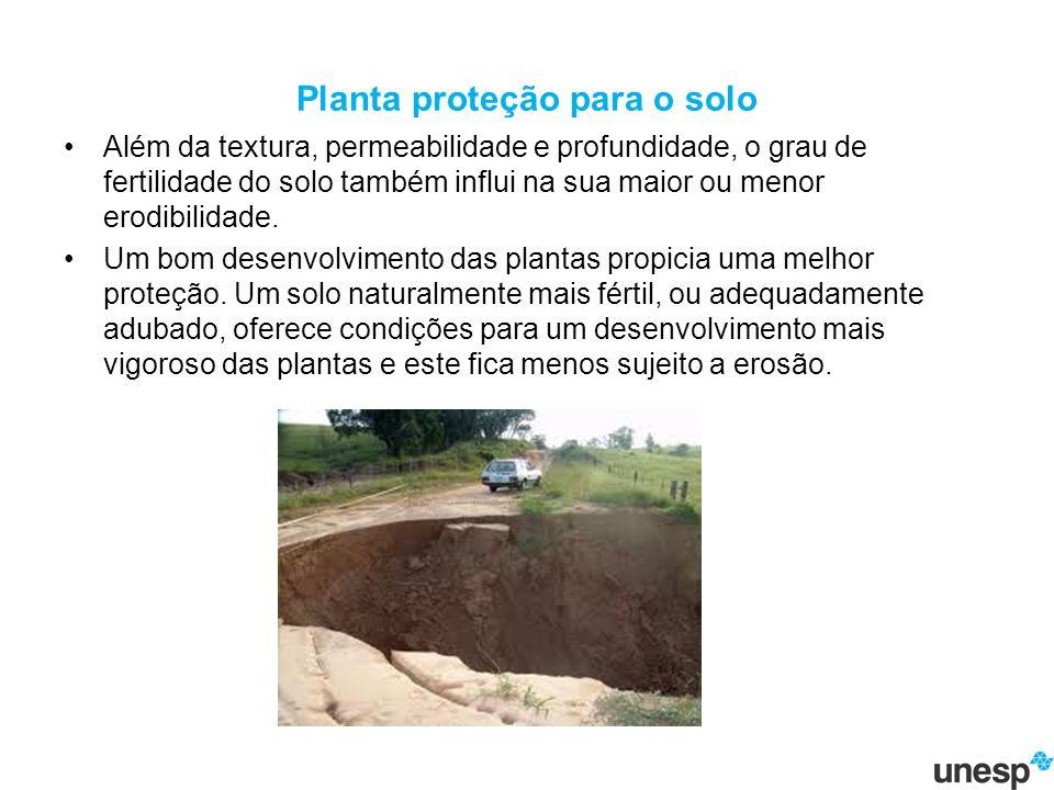 Planta proteção para o solo Além da textura, permeabilidade e profundidade, o grau de fertilidade do solo também influi na sua maior ou menor erodibilidade.