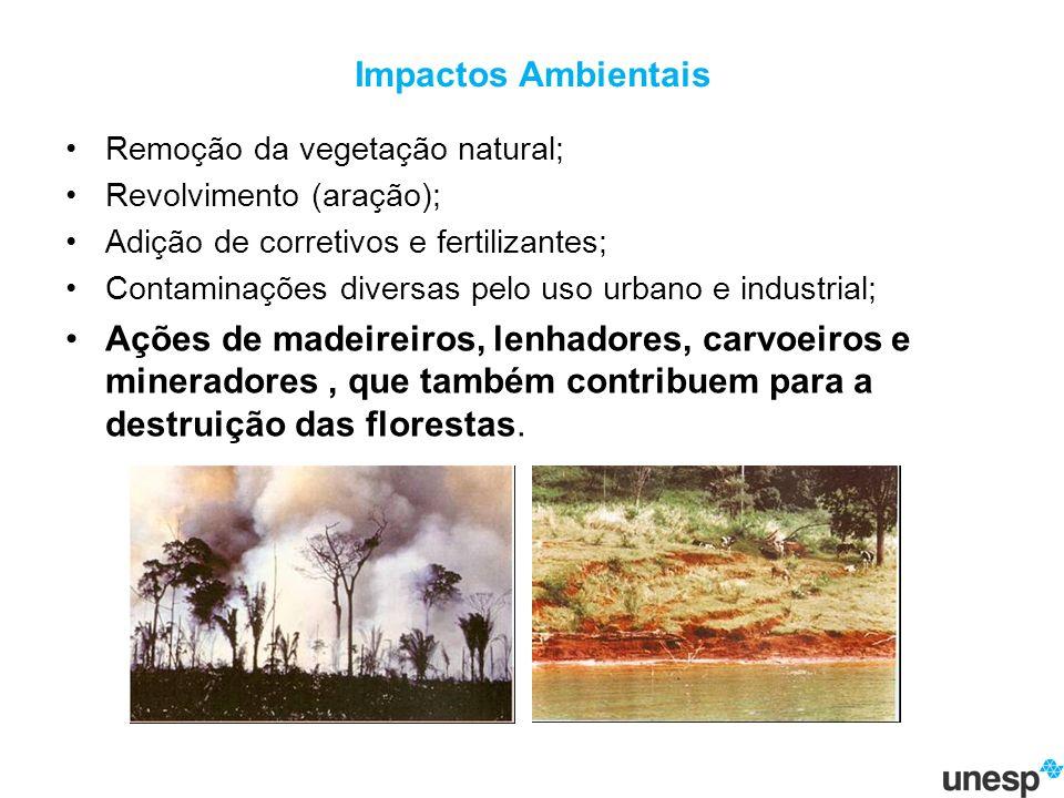 Impactos Ambientais Remoção da vegetação natural; Revolvimento (aração); Adição de corretivos e fertilizantes; Contaminações diversas pelo uso urbano e industrial; Ações de madeireiros, lenhadores, carvoeiros e mineradores, que também contribuem para a destruição das florestas.
