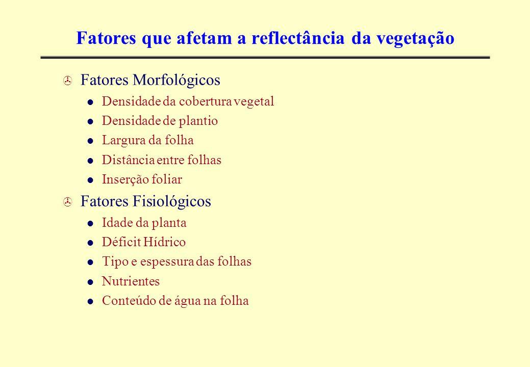 Fatores que afetam a reflectância da vegetação > Fatores Morfológicos Densidade da cobertura vegetal Densidade de plantio Largura da folha Distância e