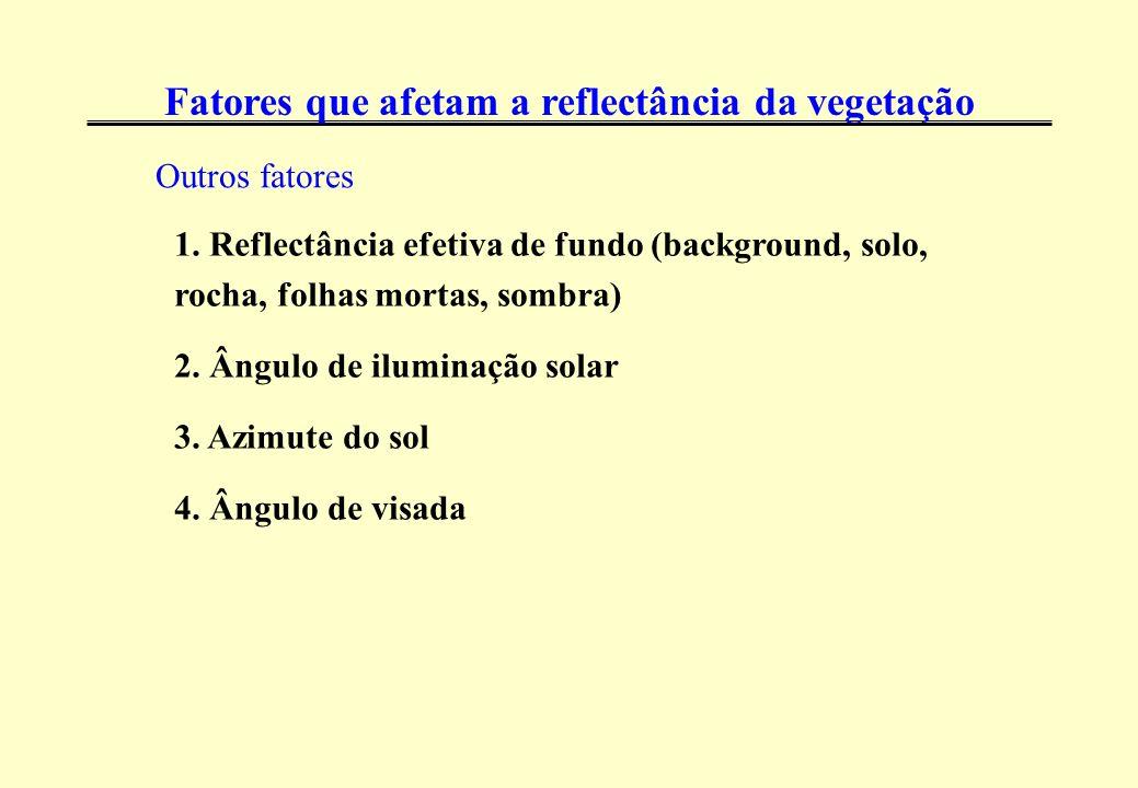 1. Reflectância efetiva de fundo (background, solo, rocha, folhas mortas, sombra) 2. Ângulo de iluminação solar 3. Azimute do sol 4. Ângulo de visada