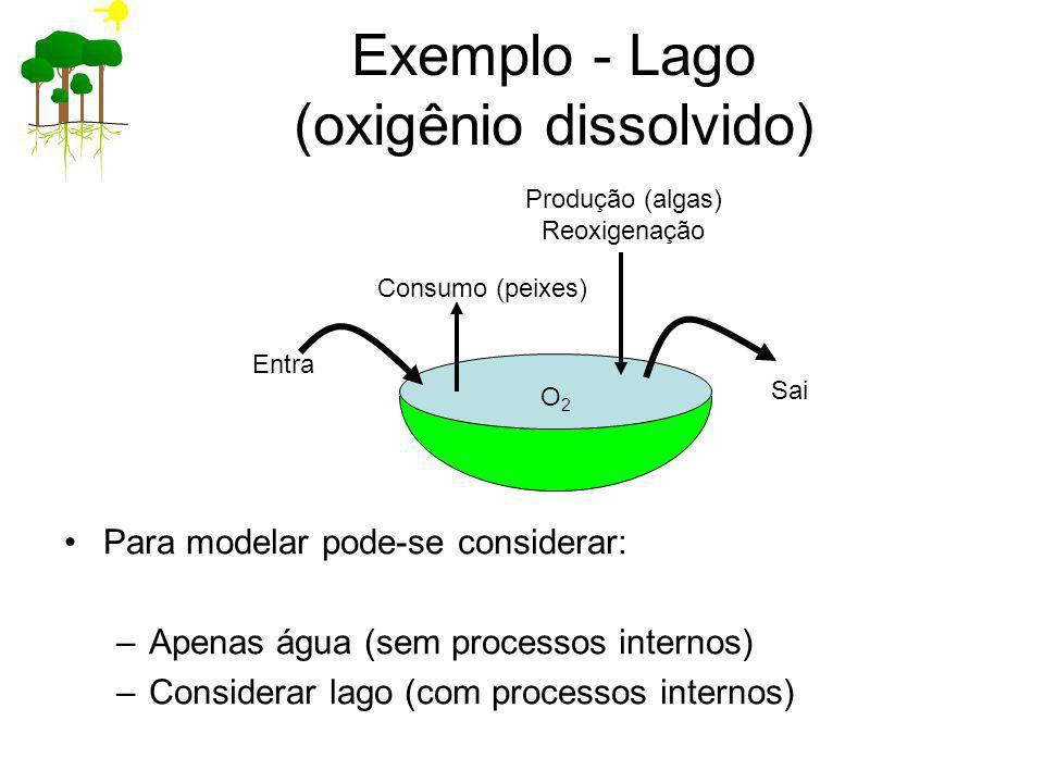 Exemplo - Lago (oxigênio dissolvido) Para modelar pode-se considerar: –Apenas água (sem processos internos) –Considerar lago (com processos internos)