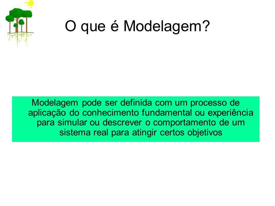 O que é Modelagem? Modelagem pode ser definida com um processo de aplicação do conhecimento fundamental ou experiência para simular ou descrever o com