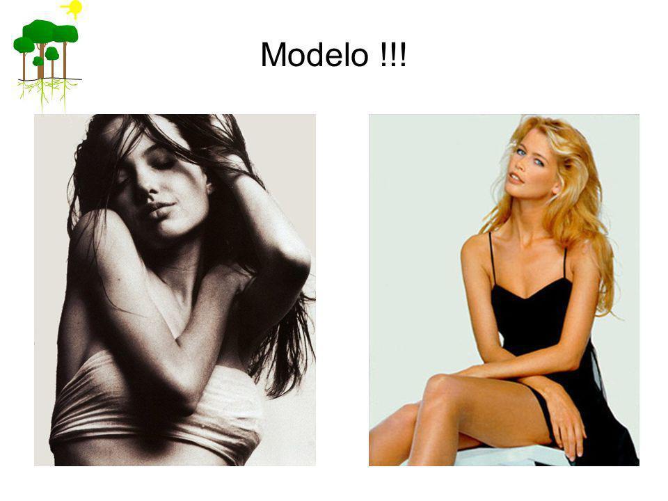Modelo !!!