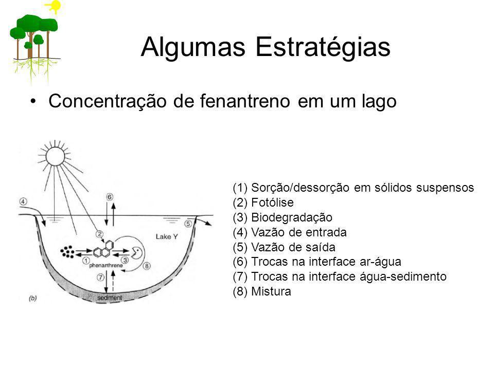 Algumas Estratégias Concentração de fenantreno em um lago (1)Sorção/dessorção em sólidos suspensos (2)Fotólise (3)Biodegradação (4)Vazão de entrada (5