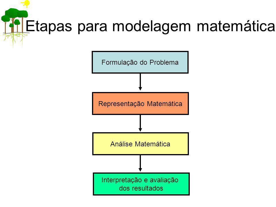 Etapas para modelagem matemática Formulação do Problema Representação Matemática Análise Matemática Interpretação e avaliação dos resultados