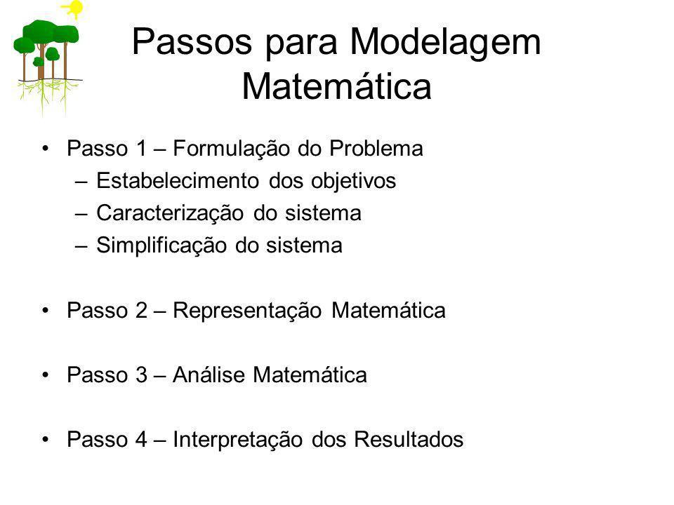 Passos para Modelagem Matemática Passo 1 – Formulação do Problema –Estabelecimento dos objetivos –Caracterização do sistema –Simplificação do sistema