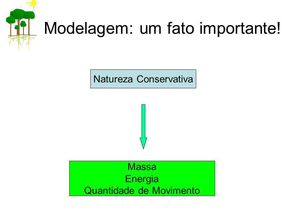 Modelagem: um fato importante! Natureza Conservativa Massa Energia Quantidade de Movimento