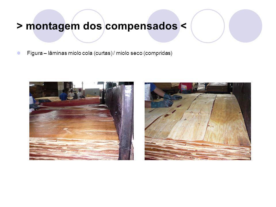 > montagem dos compensados < Figura – lâminas miolo cola (curtas) / miolo seco (compridas)