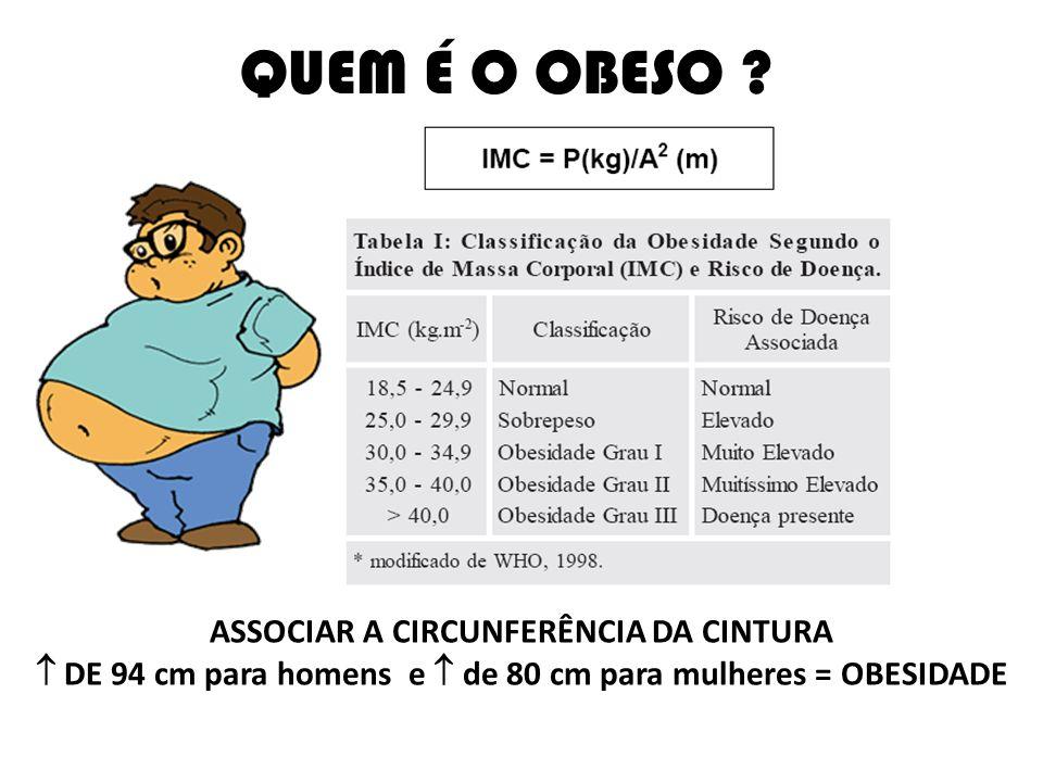 FATORES DESENCADEANTES DA OBESIDADE Monteiro (2007)