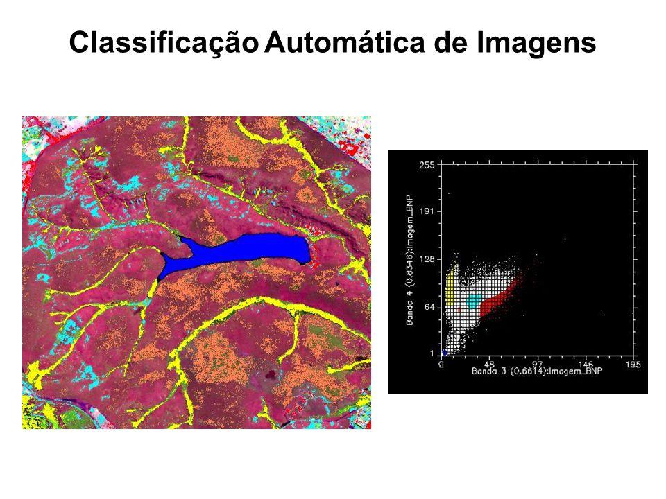 Classificação Automática de Imagens