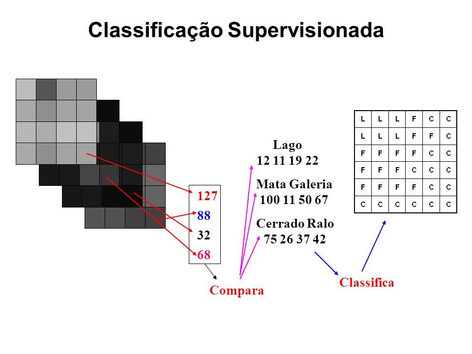 127 88 68 32 Lago 12 11 19 22 Mata Galeria 100 11 50 67 Cerrado Ralo 75 26 37 42 Compara Classifica Classificação Supervisionada