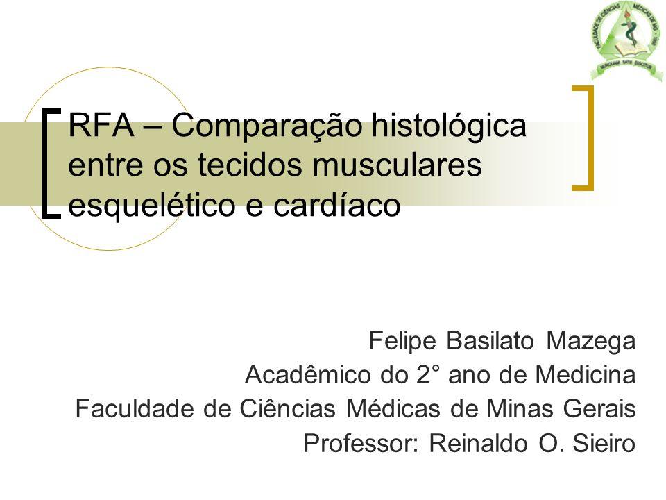 RFA – Comparação histológica entre os tecidos musculares esquelético e cardíaco Felipe Basilato Mazega Acadêmico do 2° ano de Medicina Faculdade de Ci