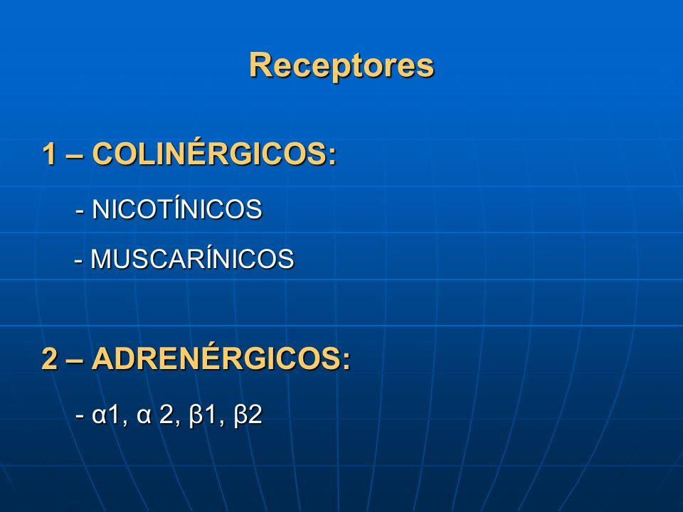 Receptores 1 – COLINÉRGICOS: - NICOTÍNICOS - MUSCARÍNICOS 2 – ADRENÉRGICOS: - α1, α 2, β1, β2