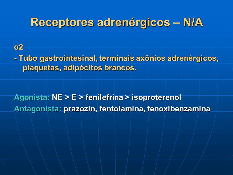 Receptores adrenérgicos – N/A α2 - Tubo gastrointesinal, terminais axônios adrenérgicos, plaquetas, adipócitos brancos. Agonista: NE > E > fenilefrina
