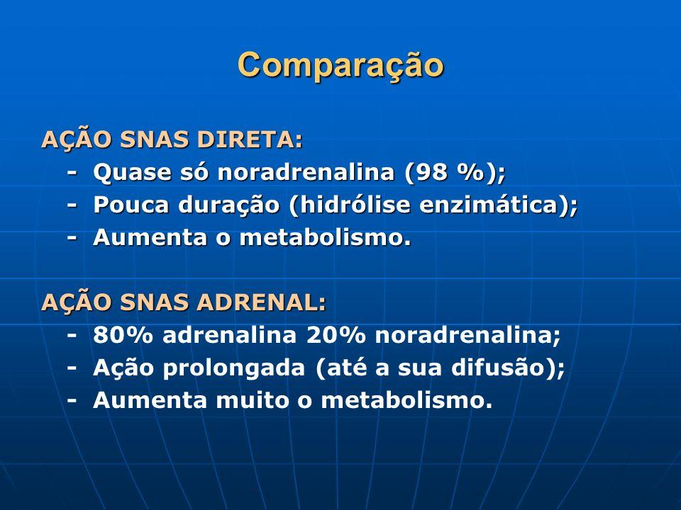 Comparação AÇÃO SNAS DIRETA: - Quase só noradrenalina (98 %); - Pouca duração (hidrólise enzimática); - Aumenta o metabolismo. AÇÃO SNAS ADRENAL: AÇÃO