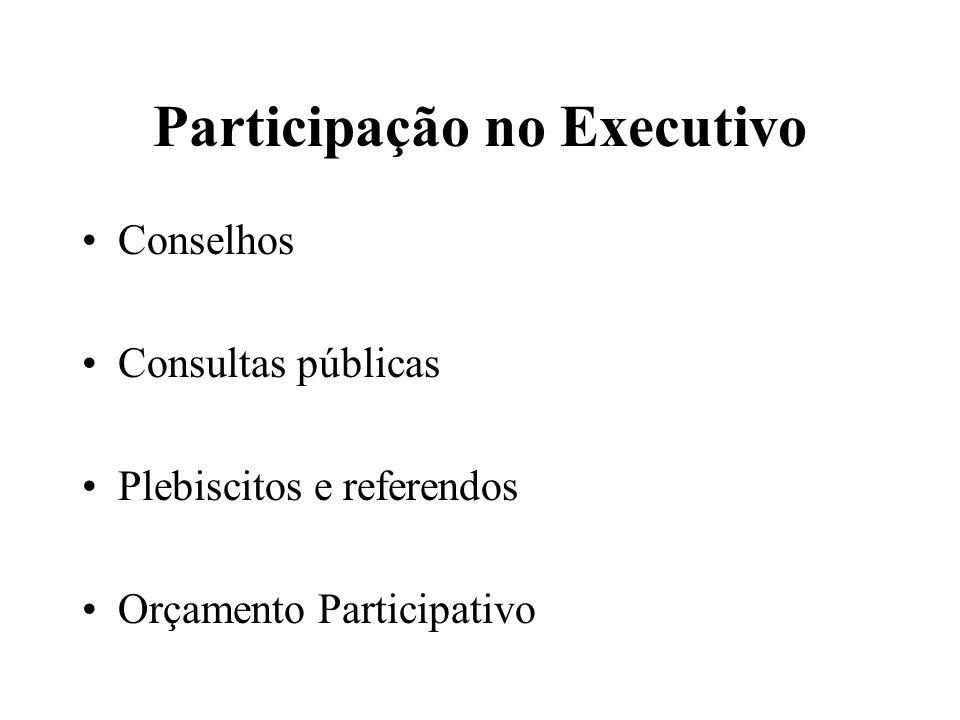 Participação no Executivo Conselhos Consultas públicas Plebiscitos e referendos Orçamento Participativo
