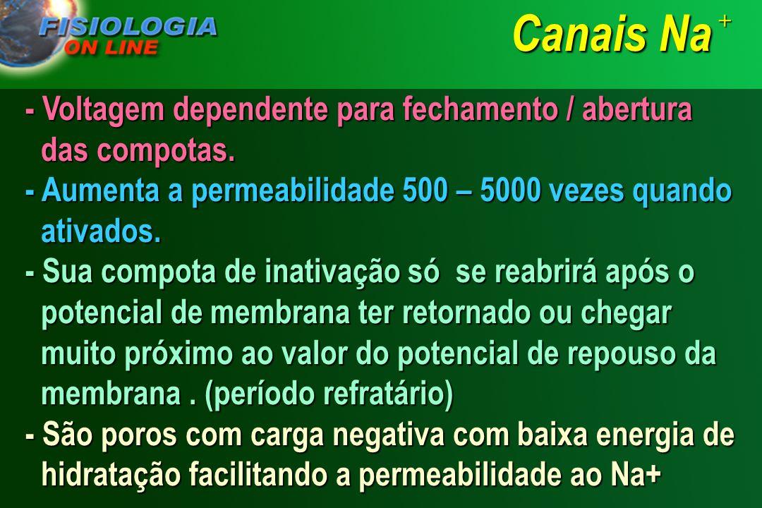 CANAIS DE SÓDIO