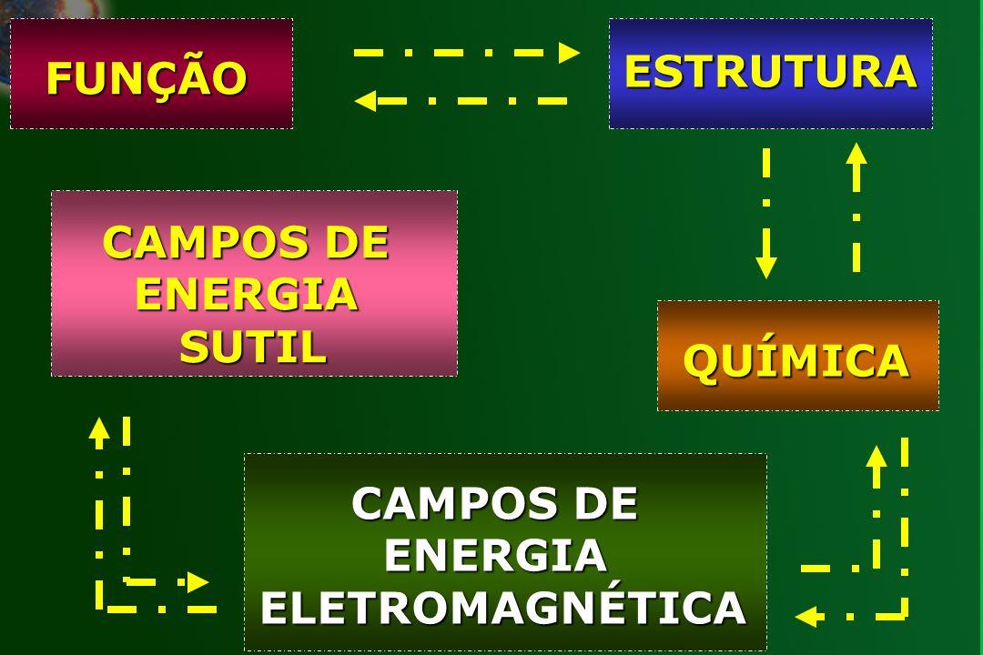 FUNÇÃO ESTRUTURA QUÍMICA CAMPOS DE ENERGIA ELETROMAGNÉTICA